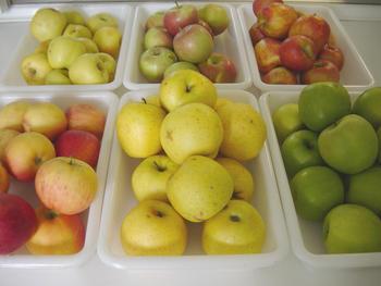 Manzanas (Foto cedida por el ITA)