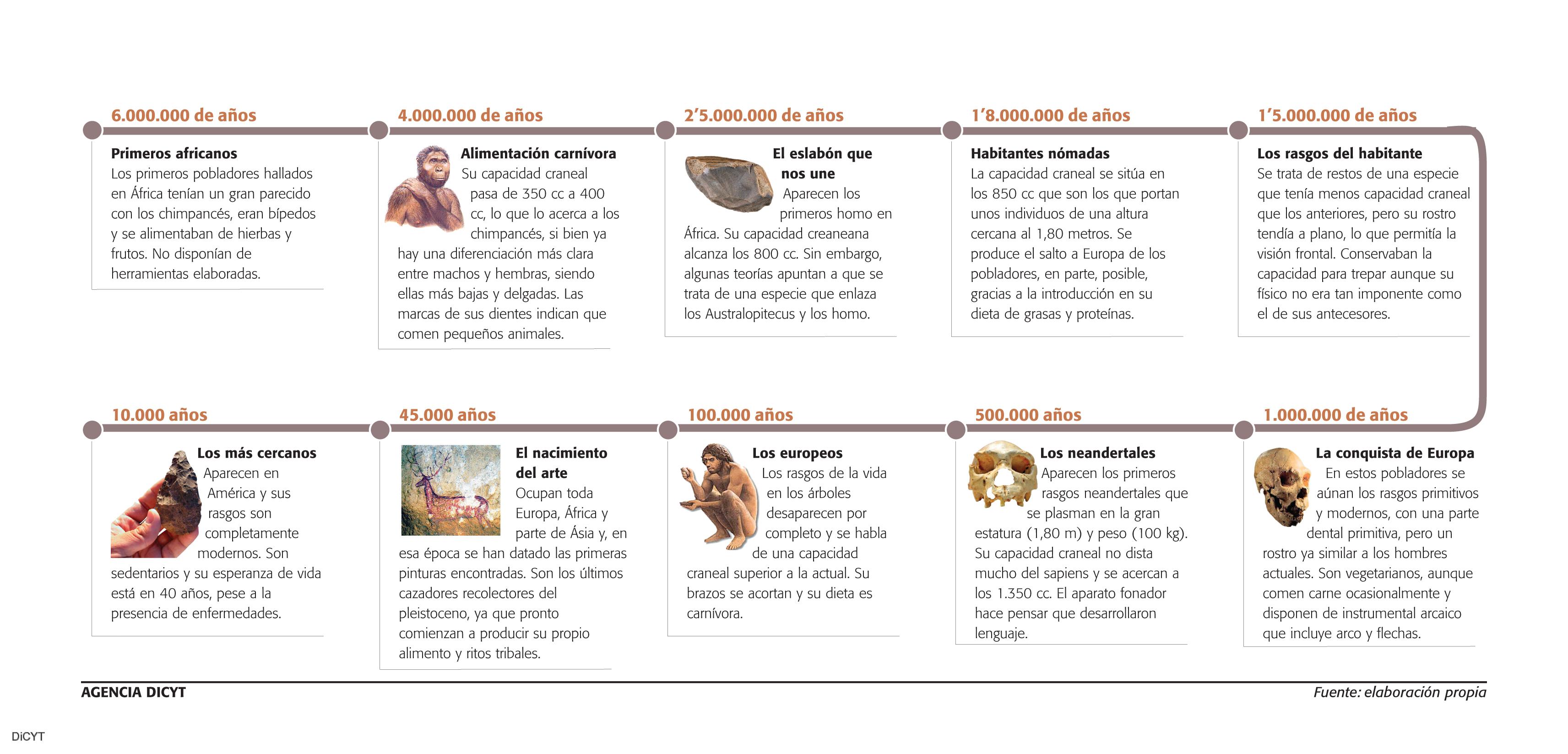 Gráfico sobre la evolución del Homo sapiens.
