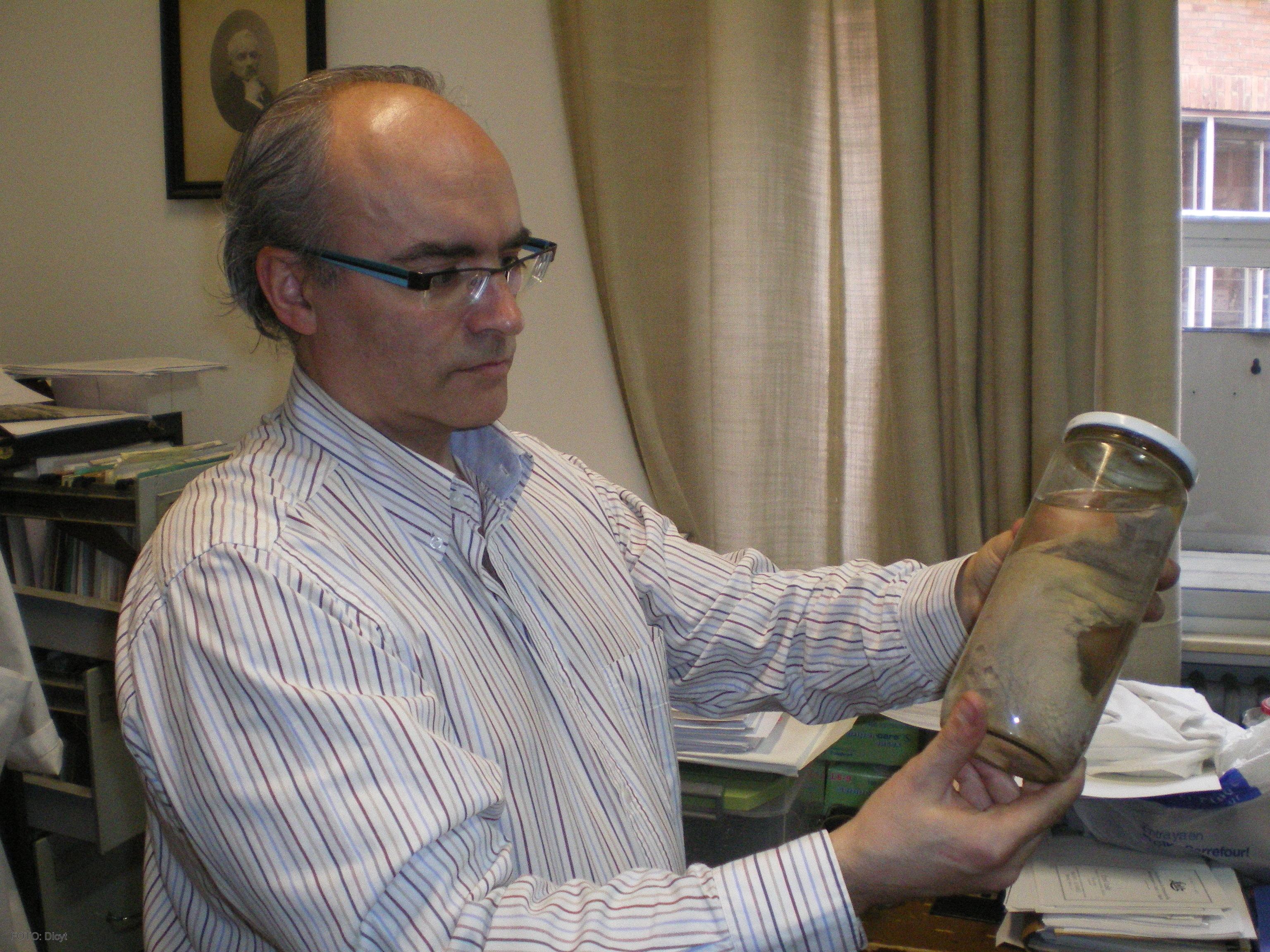 El profesor de Anatomía, Juan Francisco Pastor, muestra la lengua de ...