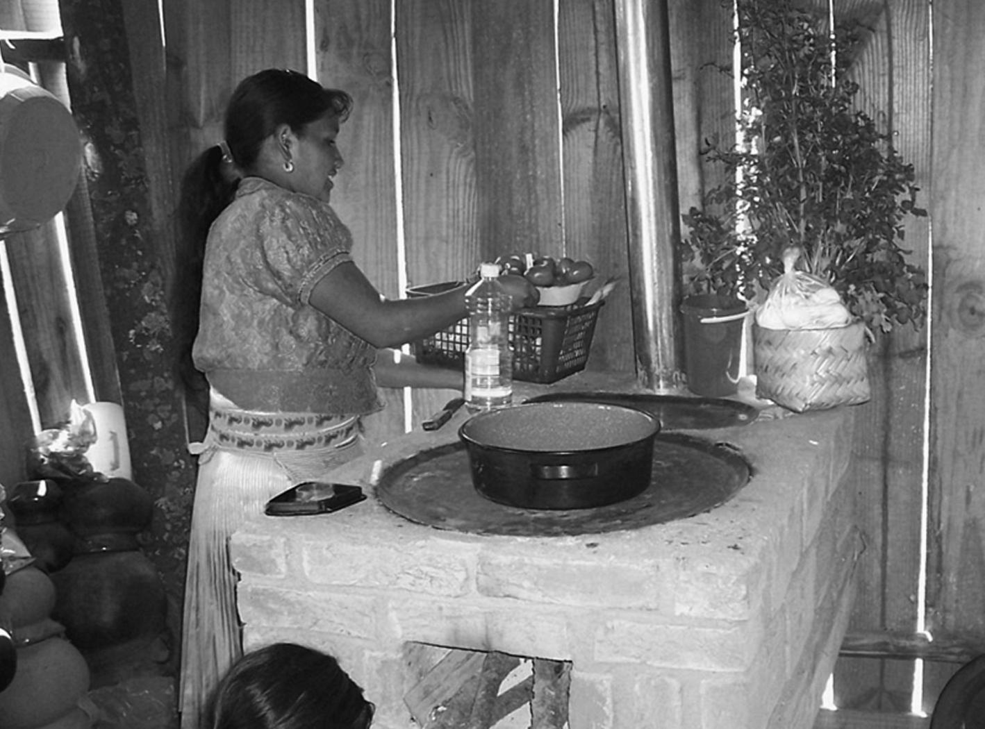 mujer cocina en una estufa del proyecto Patsari, en Michoacán ...
